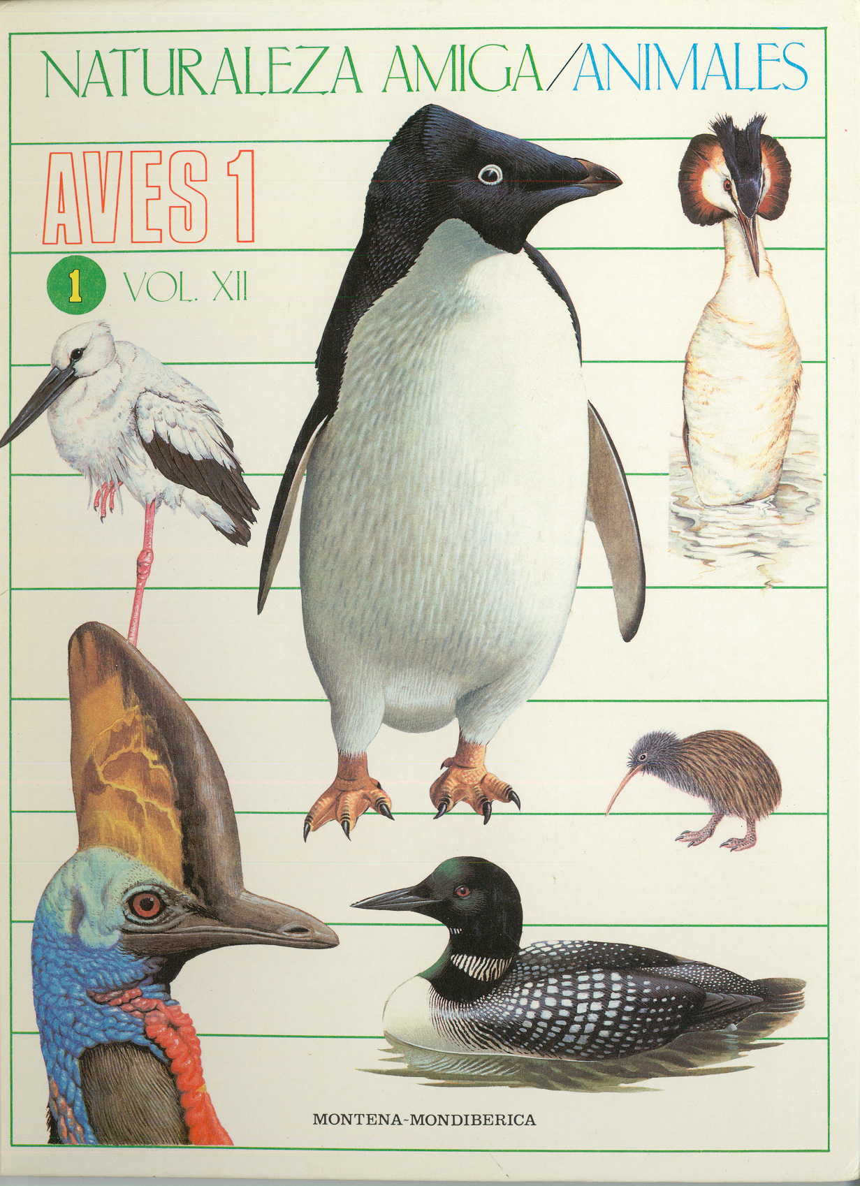 «Aves 1 (Naturaleza Amiga / Animales)»